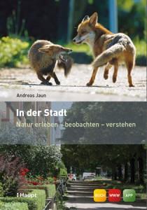 InDerStadt_Jaun